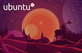 Kurs Linux Ubuntu od podstaw